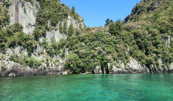 Western Bays – Hidden Wonders Half Day Tour